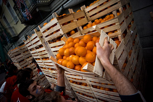 battle_of_the_oranges_boxes
