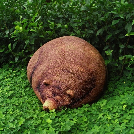 grizzlybear2