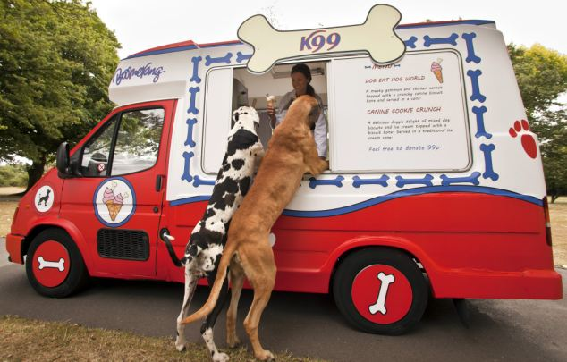The k99 ice cream van will be hitting parks throughout the summer