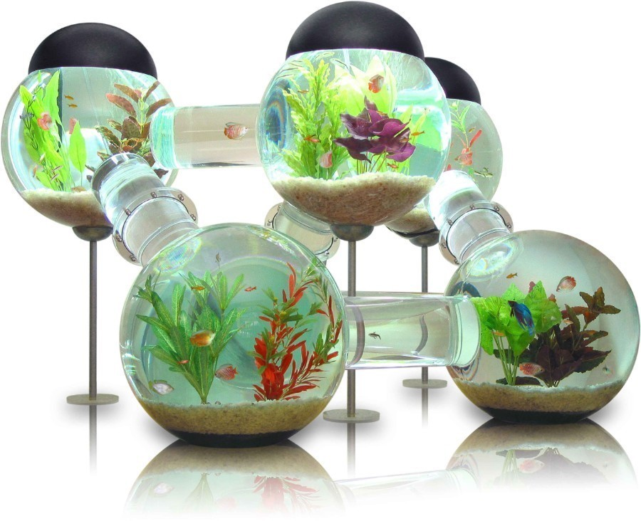 You can dress your aquarium with as many marine decorations as you ... Unique Fish Tank Decorations