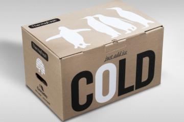 cardboardcooler1