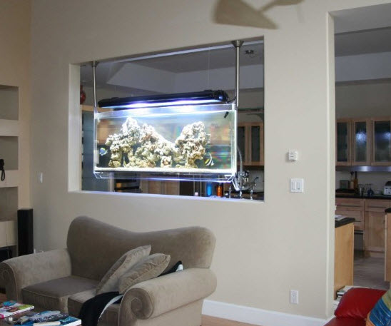 Look ma no tables the hanging aquarium for Wall hanging fish tank