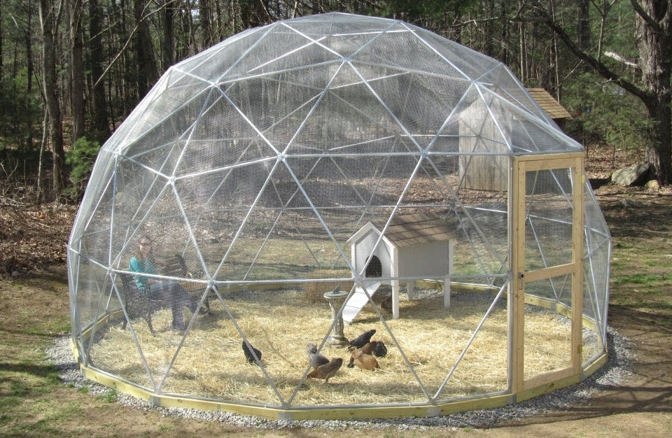Sure you can build any regular structure to use as a greenhouse in the  backyard or. Cool Things To Buy For Your Room
