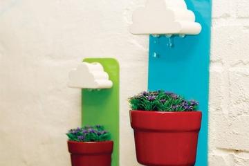 Rainy-pot-2