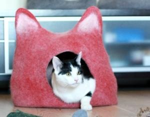 cat-cave-1