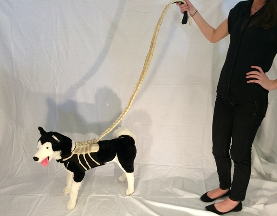 alien-facehugger-dog-leash-1