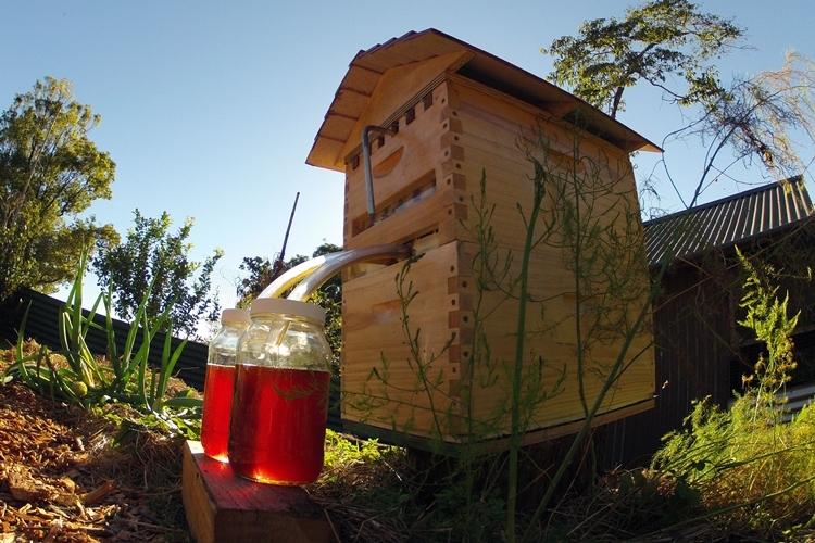 flow-bee-hive-1