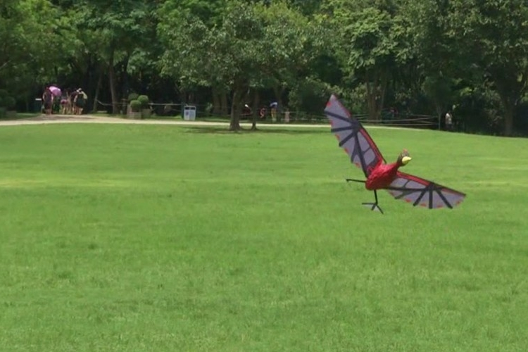 flying-pterodactyl-3