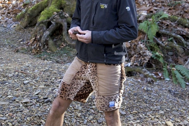polar-shorts-3