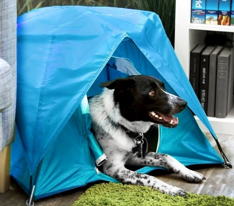 The Tiny Tent comes in two sizes small and large. The former measures 19 inches on all sides making it suitable for housing cats and integrating into ... & Tiny Tent