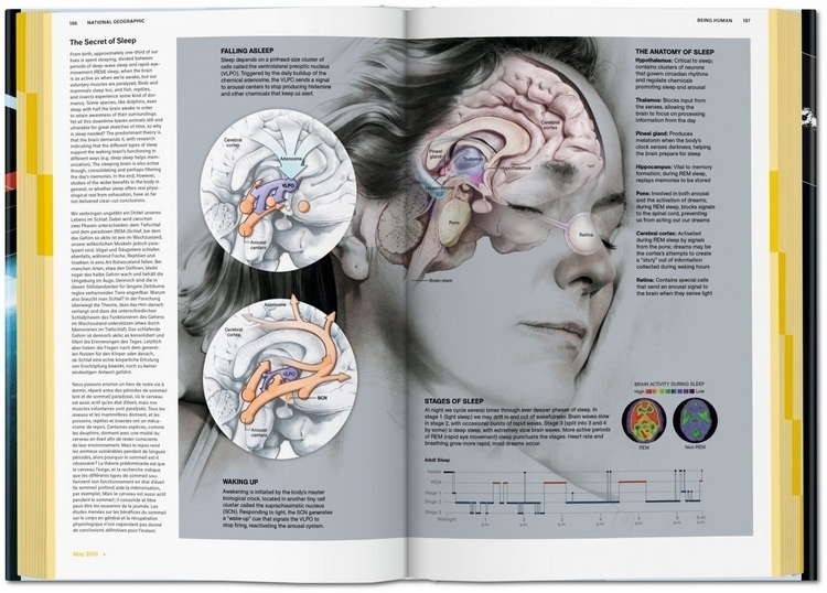 national-geographic-infographics-3