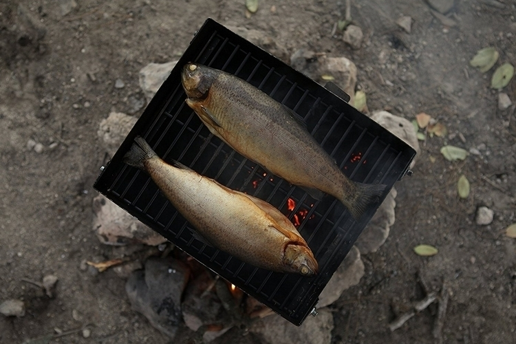 zivs-portable-smoker-4