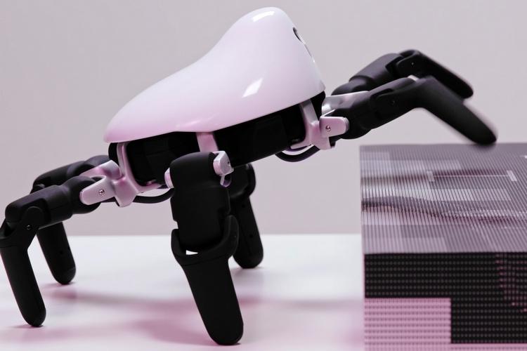 hexa-six-legged-robot-4