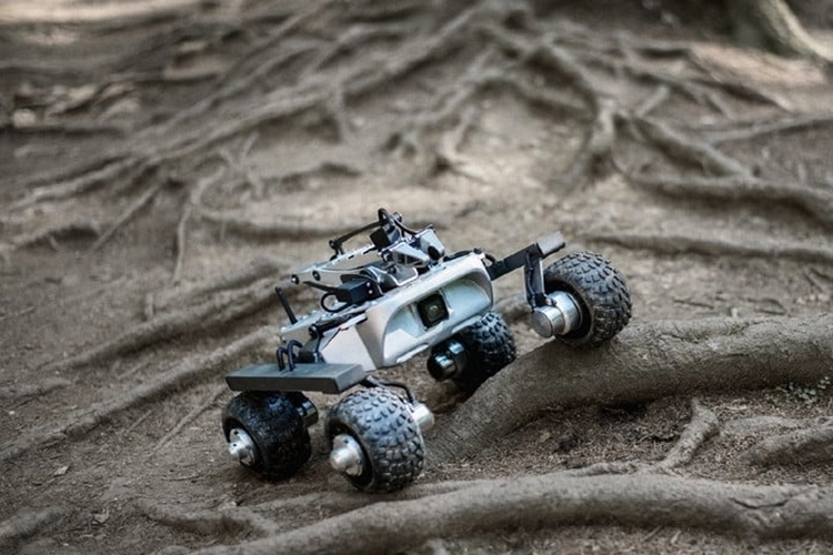turtle-rover-1