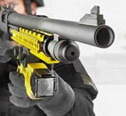 Wireless Stun Gun