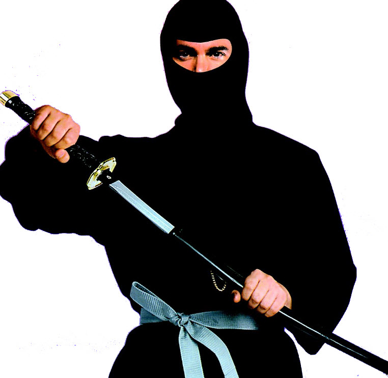 Learn Something Useful Over The Weekend: Private Ninja Lessons