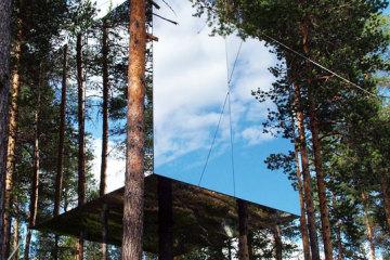 treehotel1