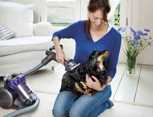 Why Vacuum The Couch For Dog Hairs When You Vacuum The Dog? Thatu0027s The  Clever Thinking Behind The Dyson Groom Tool, A Vacuum Cleaner That Sucks Up  Loose ...
