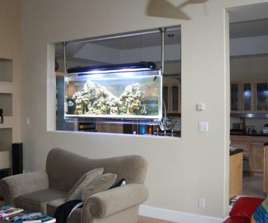 Look Ma No Tables The Hanging Aquarium