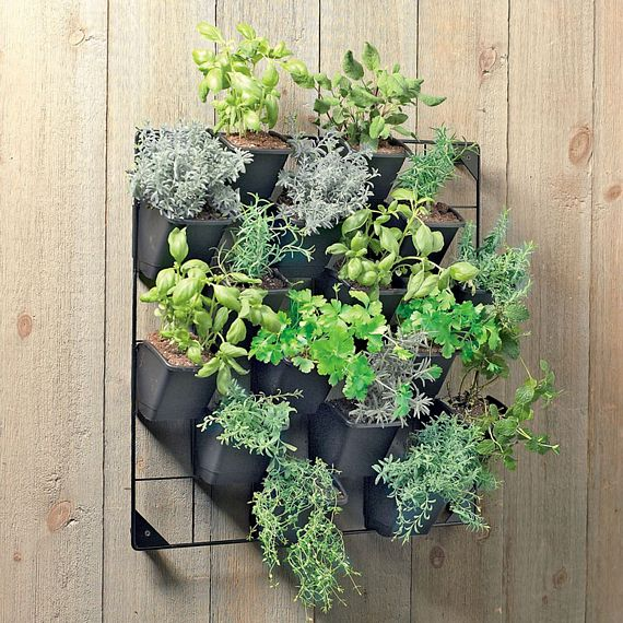 Simple Vertical Garden: Vertical Wall Garden Mounts Your Potted Plants For Easy Access