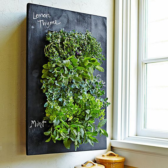 Exceptionnel Still Looking For Creative Ways To Set Up A Small Garden Inside Your Urban  Dwelling? If Youu0027re Thinking Of Setting Up A Wall Mounted Herb Garden, ...