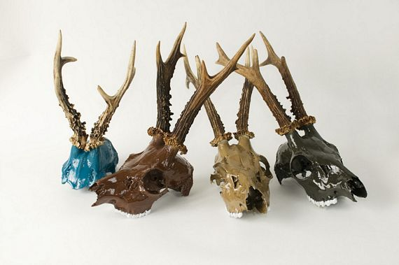 Painted Animal Skulls Manly D 233 Cor Can Be Pretty Too