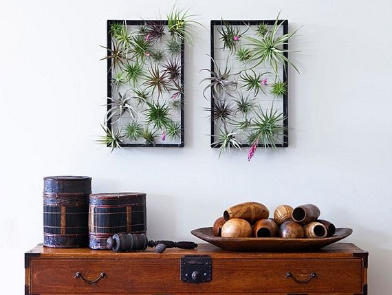 Want To Green Up Your House Without Dealing With The Hassles Of Soil And  Pots? Got A Blank Patch Of Wall That Can Use Some Fancy Art?