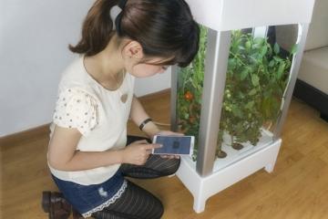 niwa-hydroponic-garden-cabinet-3