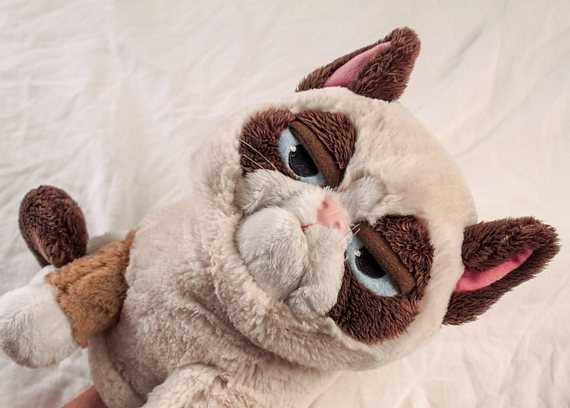 grumpy-cat-puppet-2