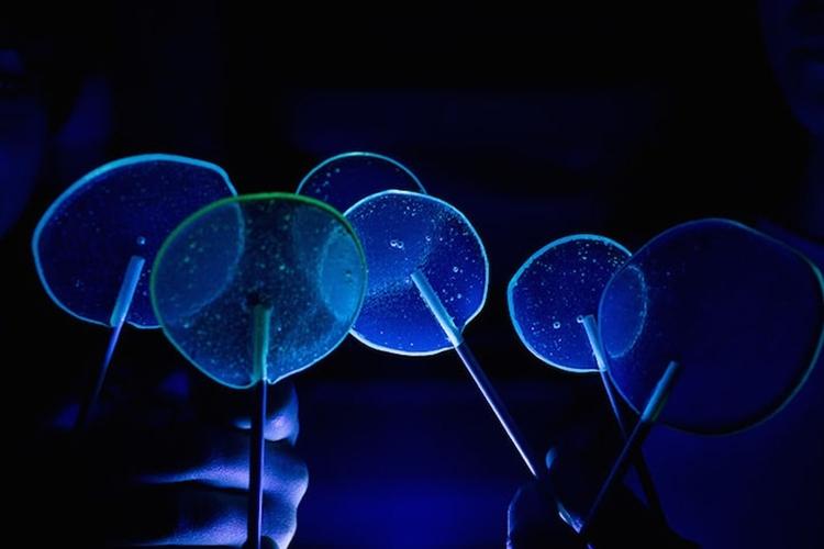 flourescent-lollipops-2