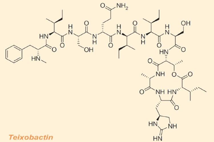 ichip-teixobactin-1