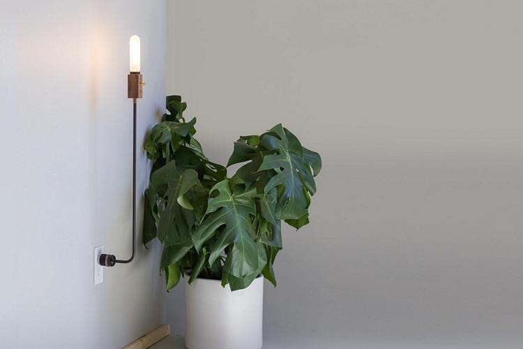 wald-plug-lamp-1