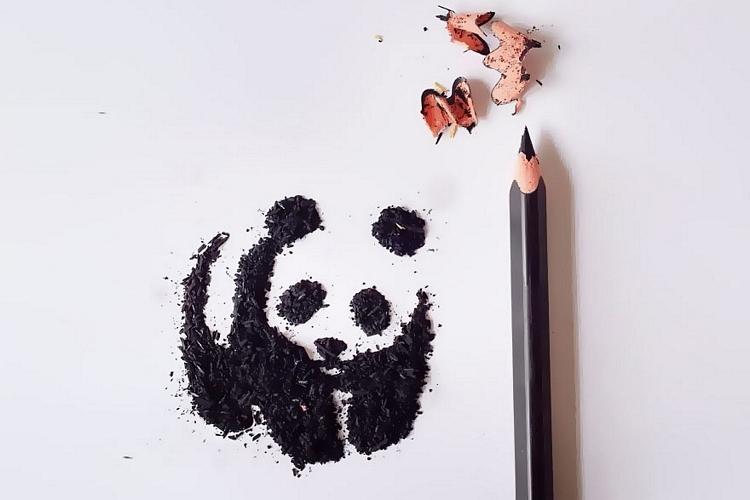 pencil-shaving-art-1