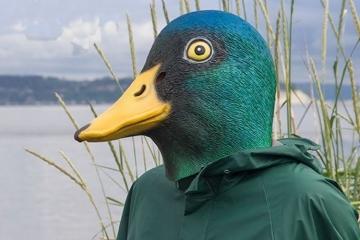 mallard-duck-mask-1