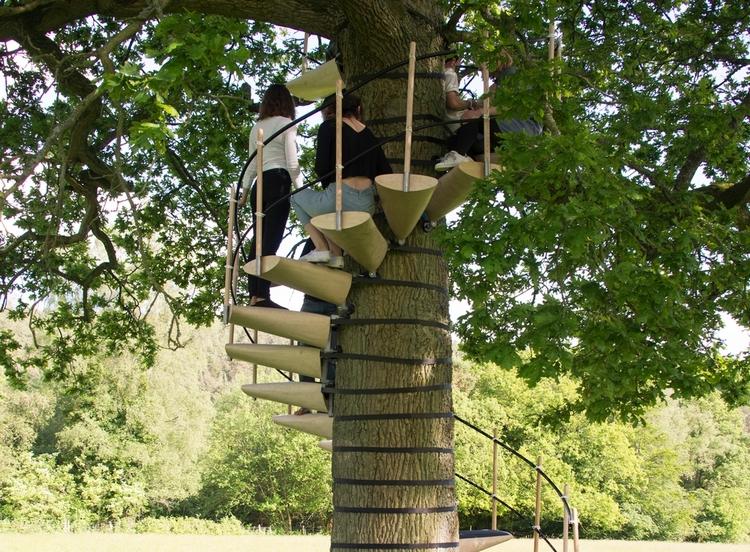 Canopystair Tree Stairway
