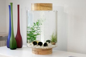 norrom-aquarium-1