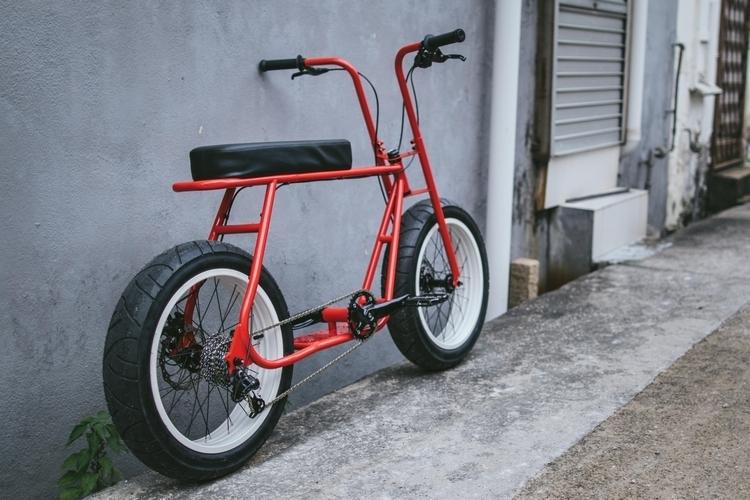 Electric Bikes For Sale >> Coast Cycles Ruckus Bike