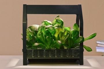 ikea-indoor-gardening-kit-1