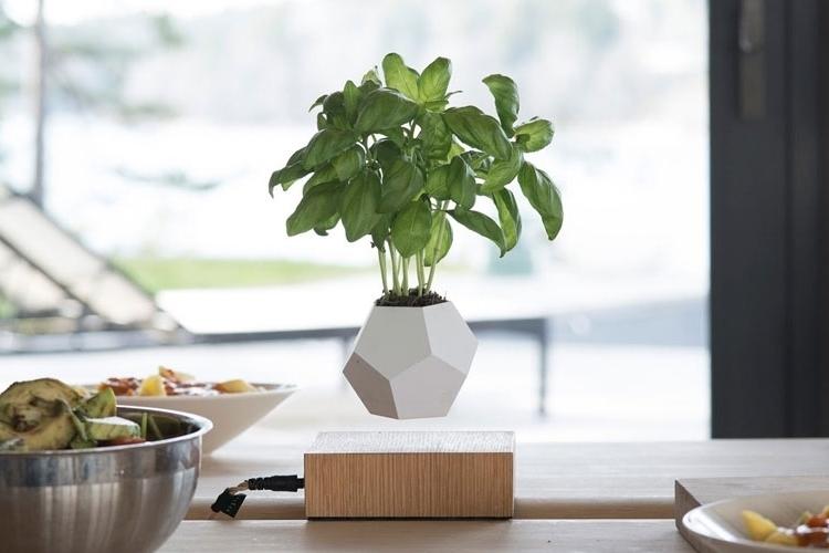 lyfe-floating-planter-1