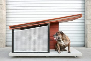 rah-design-mdk9-dog-haus-2