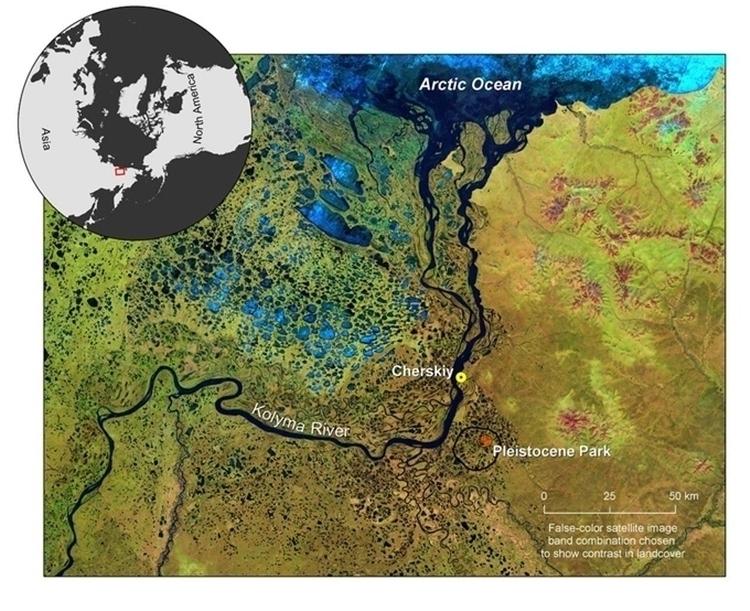 pleistocene-park-0