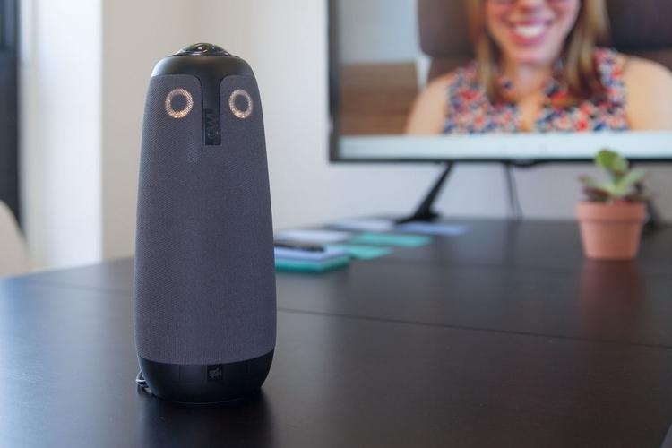 meeting-owl-2