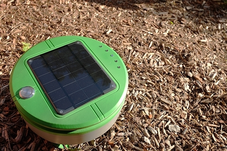 tertill-solar-powered-weeding-robot-3