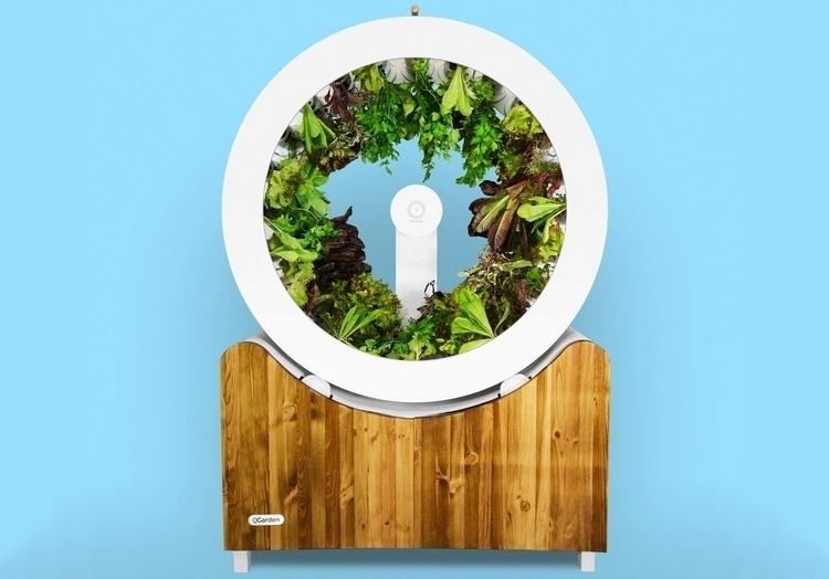ogarden-indoor-rotating-planer-0