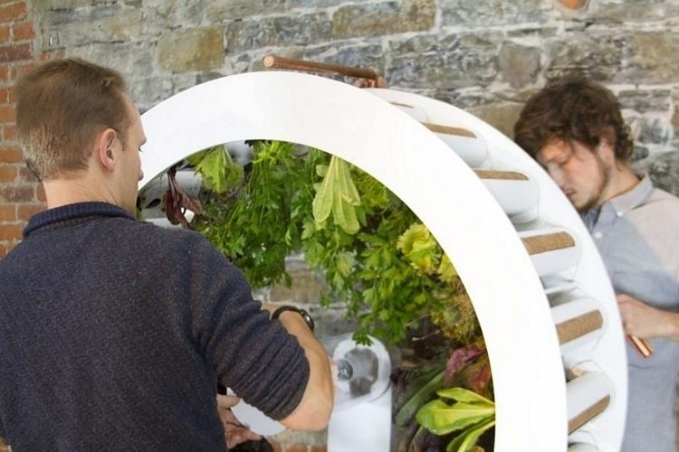 ogarden-indoor-rotating-planer-3