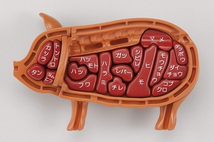 megahouse-3d-pig-dissection-puzzle-3